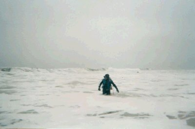 Ed enters the surf