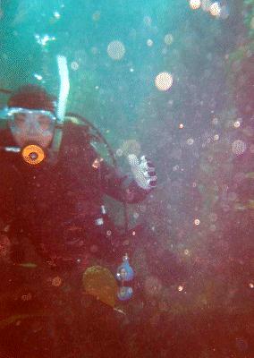 Me underwater.