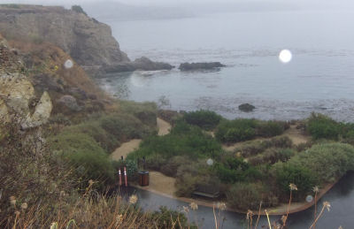 The Cove At Terranea Resort Was Pretty Flat