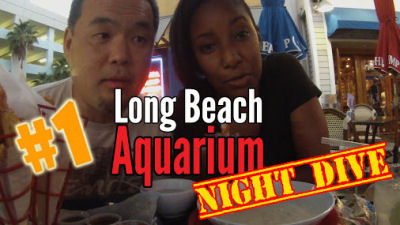 Long Beach Dive Night