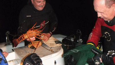 Dan holds Mirek's lobster to remind him of what one looks like.