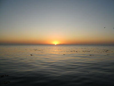 Sunrise off Santa Barbara Island.