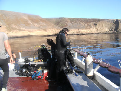 Divers return from the first dive.