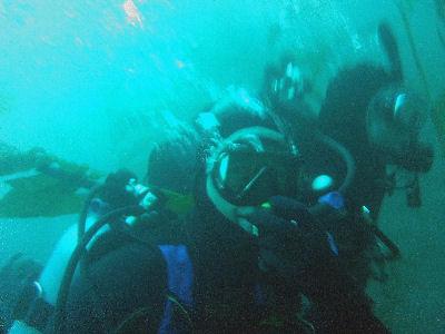Diving off of Terranea Resort.