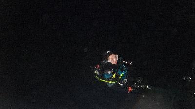 A diver returns.