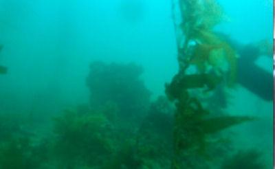 A block reef.