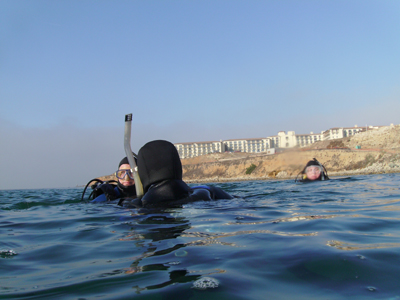 Divers off of the cove; the Terranea hotel is in the background.