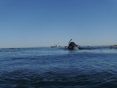 We ascended right by a fishing boat and made a surface swim to the beach to avoid the underwater surge.