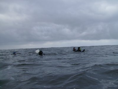 The divers meet at the marker buoy.