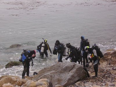 The divers enter off the cove.