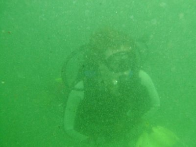 Visibility under the pier sucked!