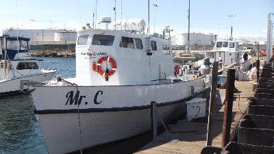 The Mr. C