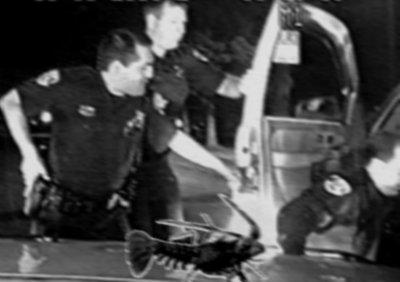 Law enforcement search a vehicle.