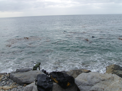 Conditions at The Cove.