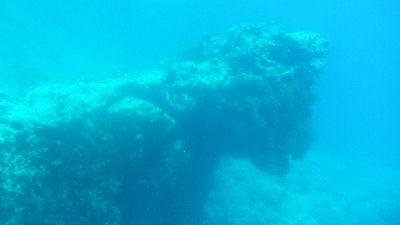 Llamani Beach Reef