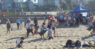 Volunteers clean the beach surface.