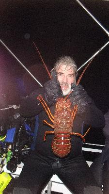 Tinm's huge bug.