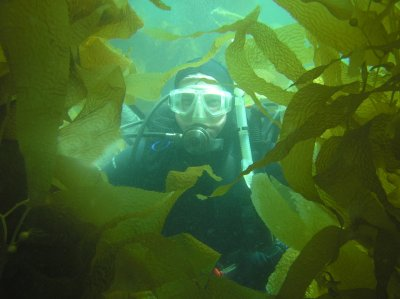Me in the kelp.