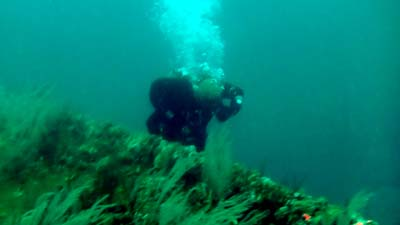 Joe and the Palawan wreck