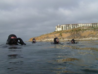 The Divevets Off Of Terranea Resort.