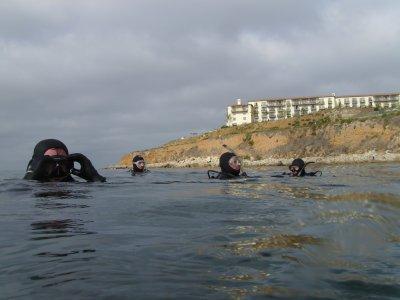 The Divevets Off Of Terranea Resort.