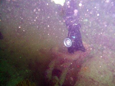 A heavy chain lies on the ocean floor.