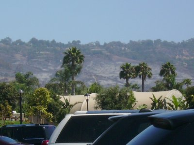 We could see the scorched earth from one of the recent fires up here in Palos Verdes.