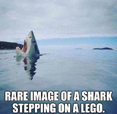 Shark stepping on a Lego.