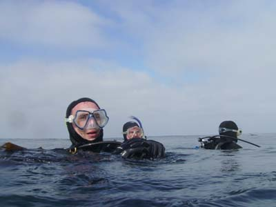 Waiting for a diver.